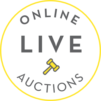 Ray white live online auctions news ray white rural for How to bid at a live auction